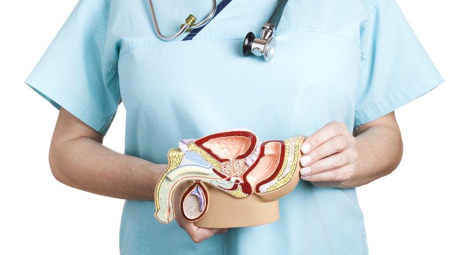 Comment protéger votre prostate contre le cancer